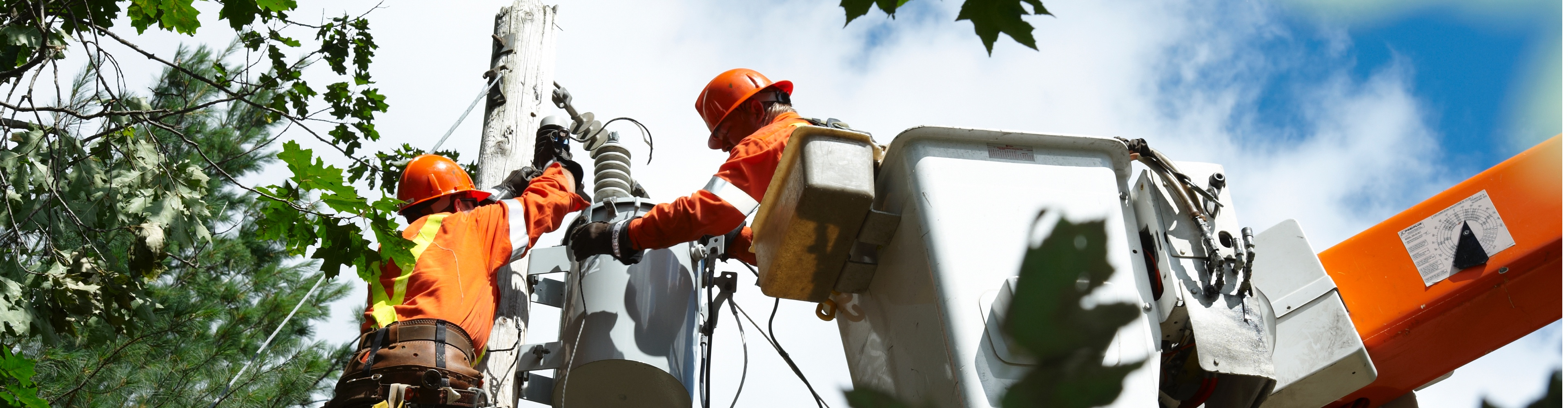 what-causes-outages-veridian